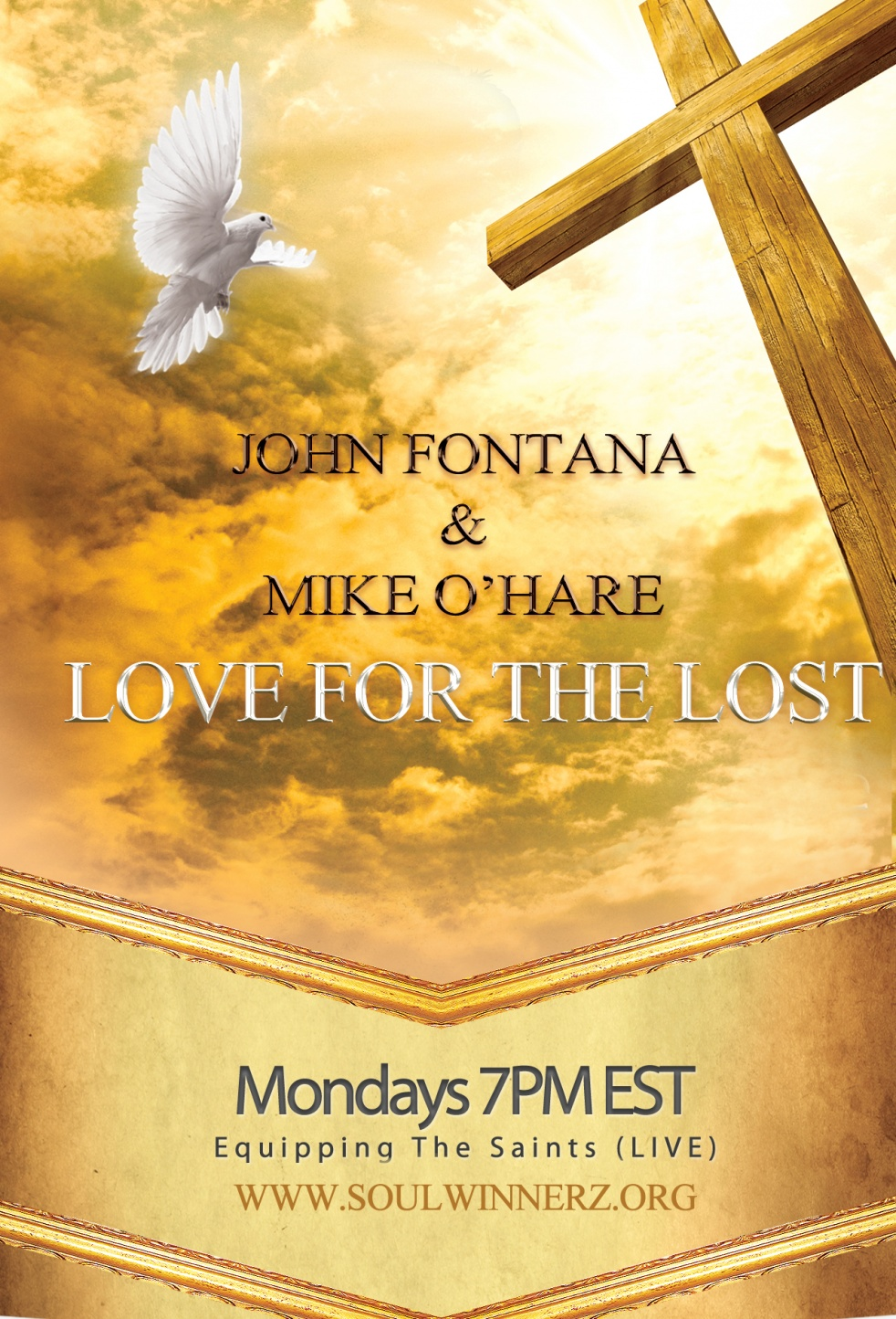 Love For The Lost (LIVE) - imagen de show de portada