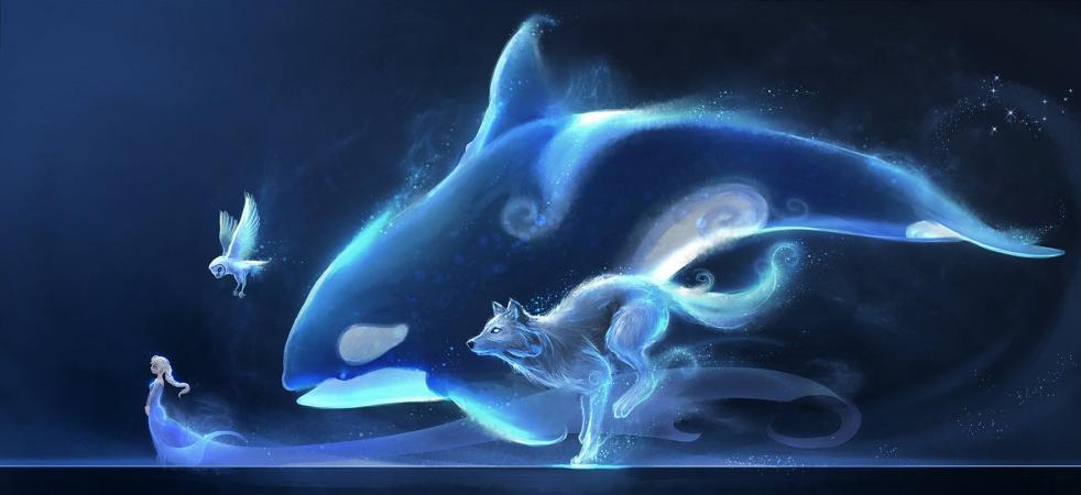 Poteri Medicina - Animali Totem - Cover Image