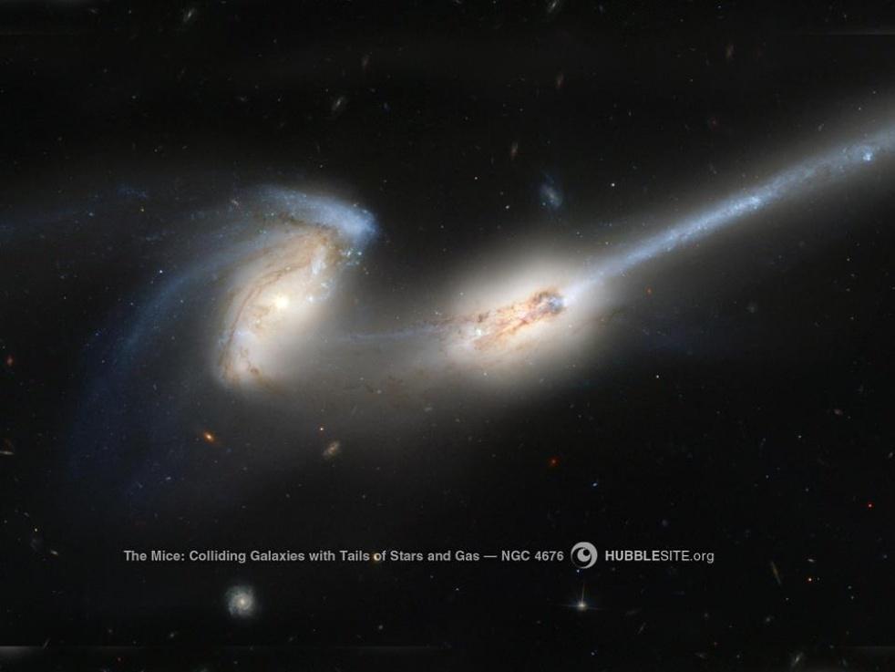 Die Stimme des Himmels - Cover Image