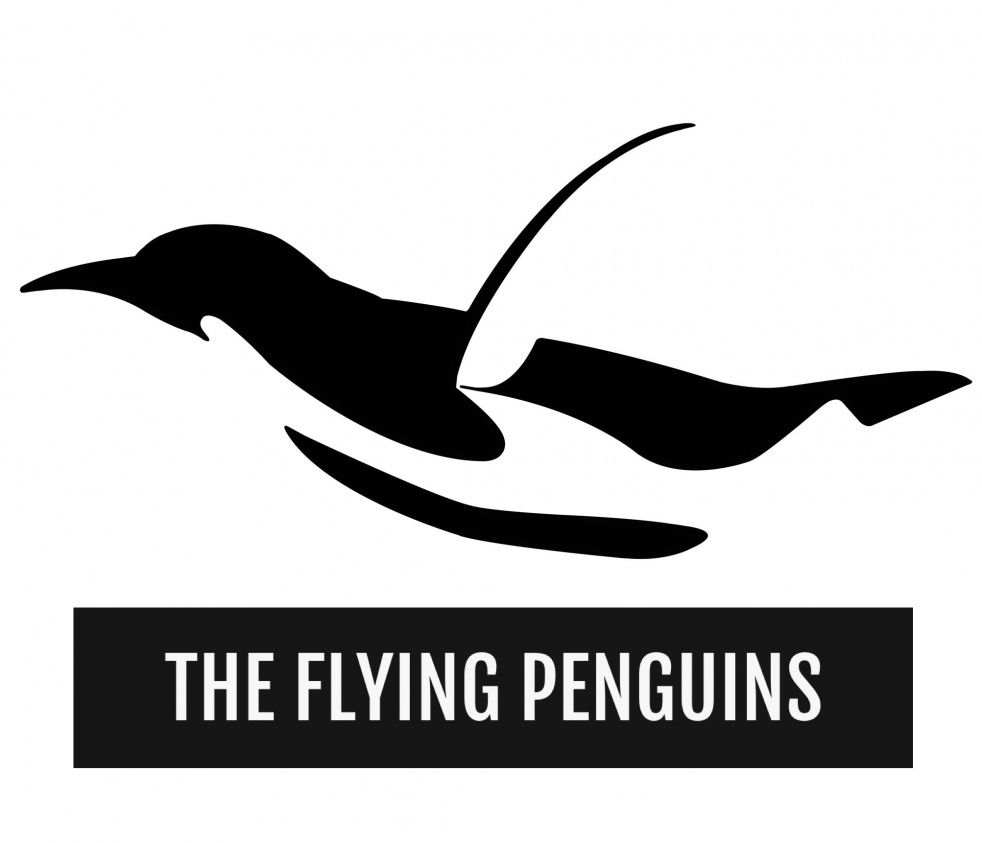 The Flying Penguins - imagen de show de portada