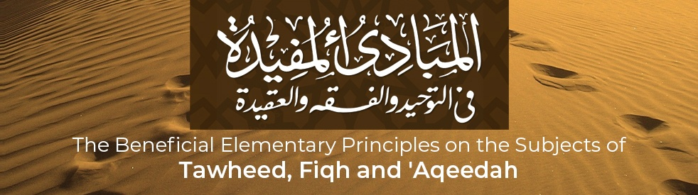 The Beneficial Elementary Principles - Cover Image