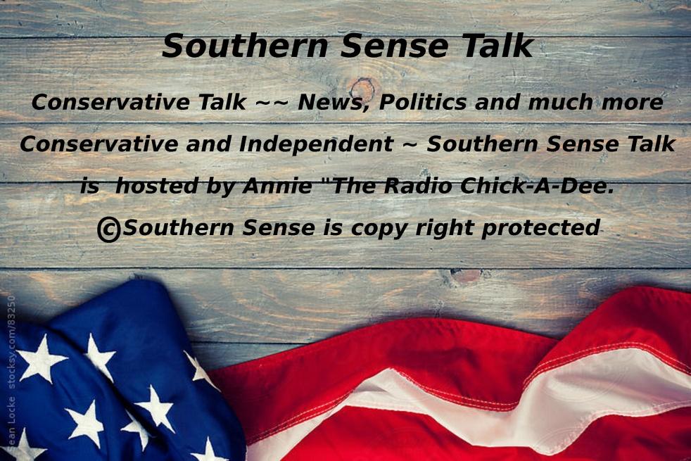Southern Sense Talk Radio - Cover Image