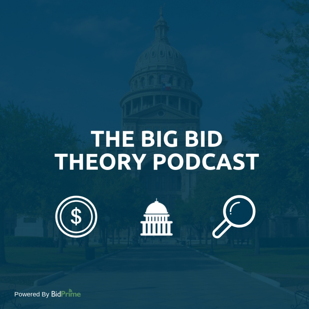 The Big Bid Theory - imagen de show de portada