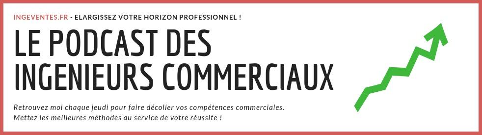 Ingeventes : ingéniez vos ventes ! - Cover Image