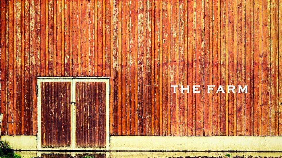 The Farm - immagine di copertina dello show