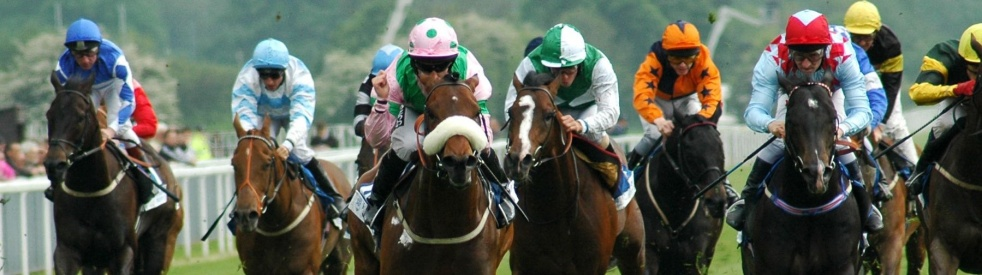 Sarnia Radio Horse Racing Selections - Cover Image