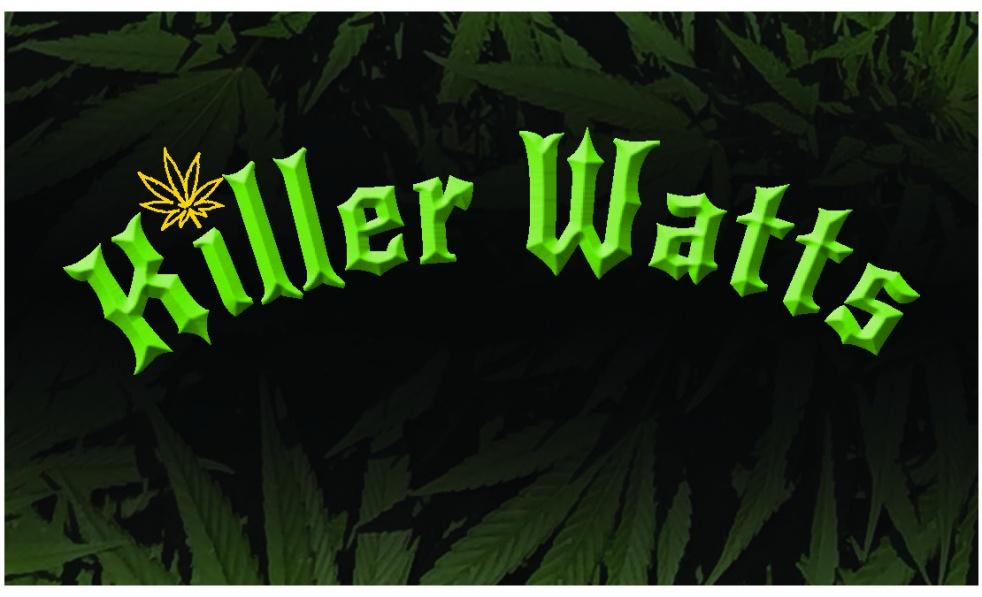 Hemp Talk With Killer Watts Farm - Cover Image