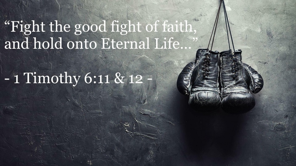 The Fight of Faith - immagine di copertina dello show