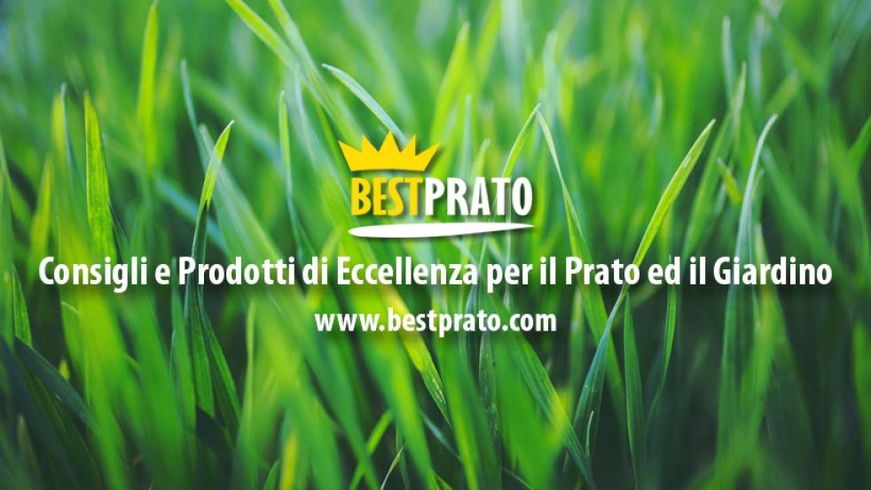 Bestprato.com - Il Podcast - immagine di copertina dello show