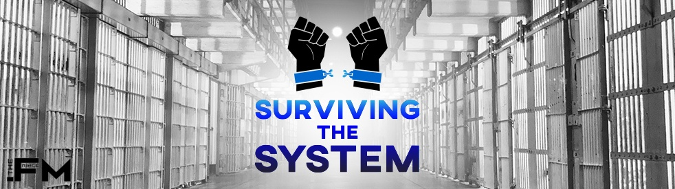 Surviving The System - show cover