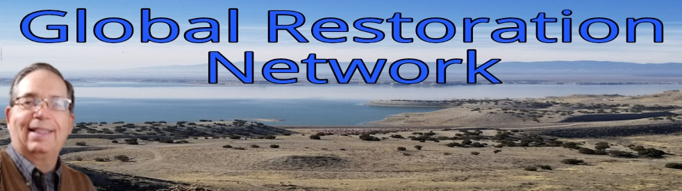 Global Restoration Network - Cover Image