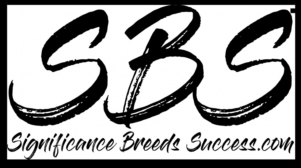Significance Breeds Success - show cover