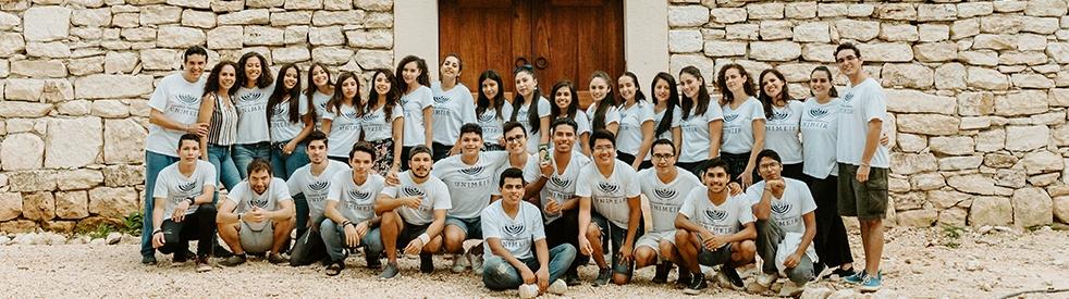 UNIMEIR I  Estudios bíblicos - Cover Image