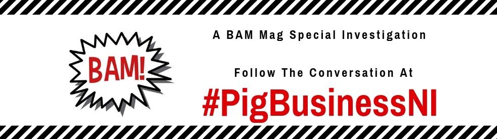 BAM Mag Special Report - #PigBusinessNI - show cover