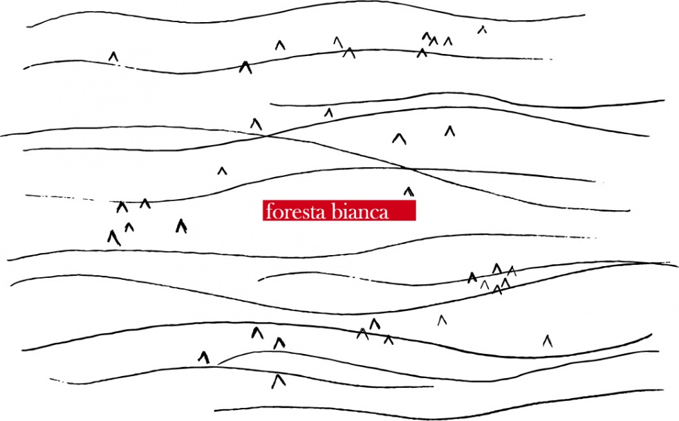 Foresta Bianca - show cover