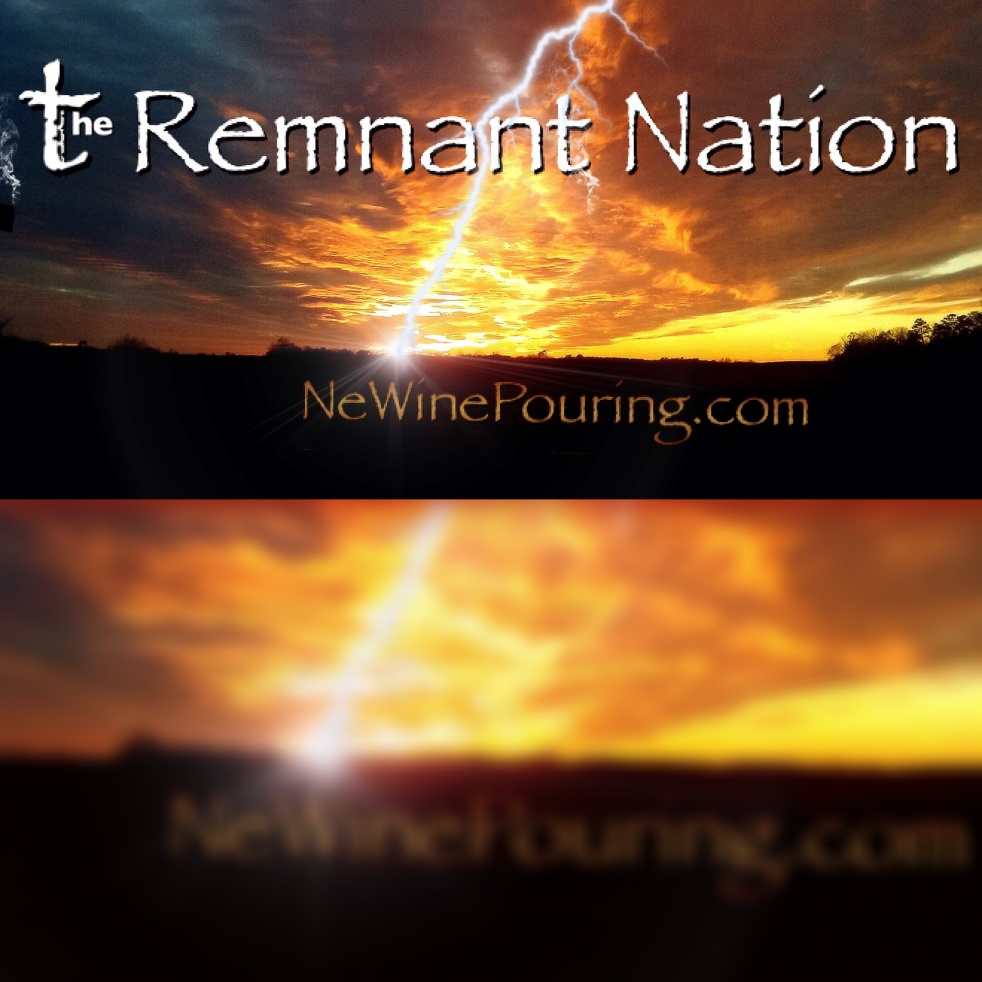 The Remnant Nation - Cover Image