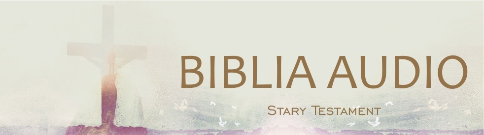 Biblia Audio Stary Testament - Cover Image