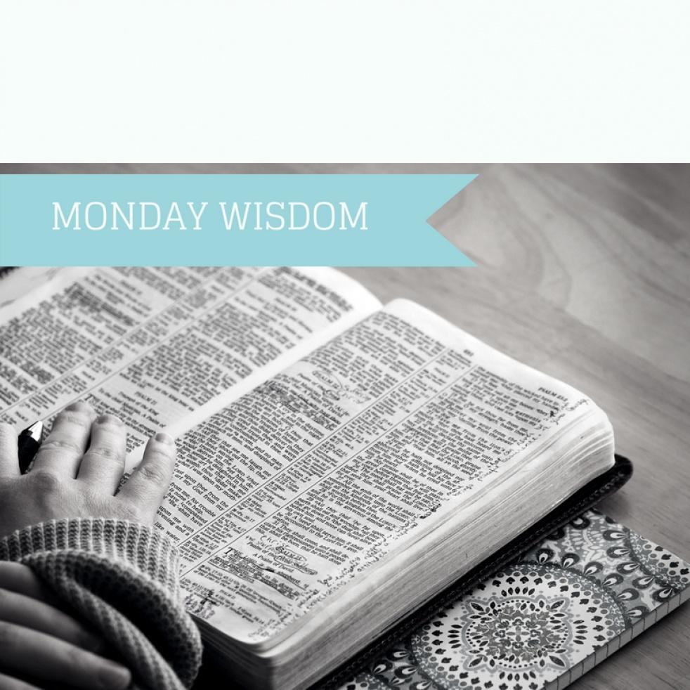Monday Wisdom - imagen de show de portada