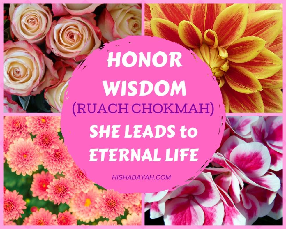 WISDOM KIDS LEARN (RUACH CHOKMAH) - show cover