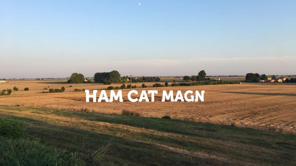 Ham Cat Magn - show cover