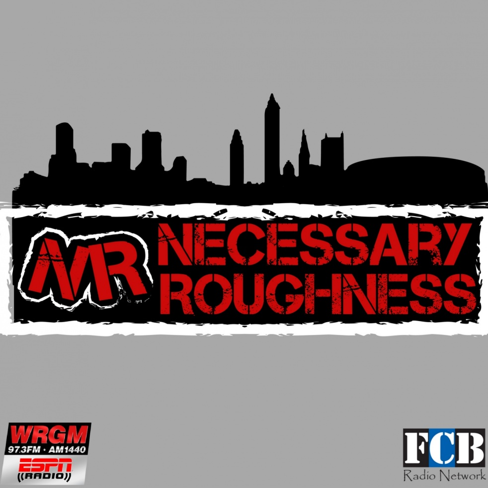 Necessary Roughness - Cover Image