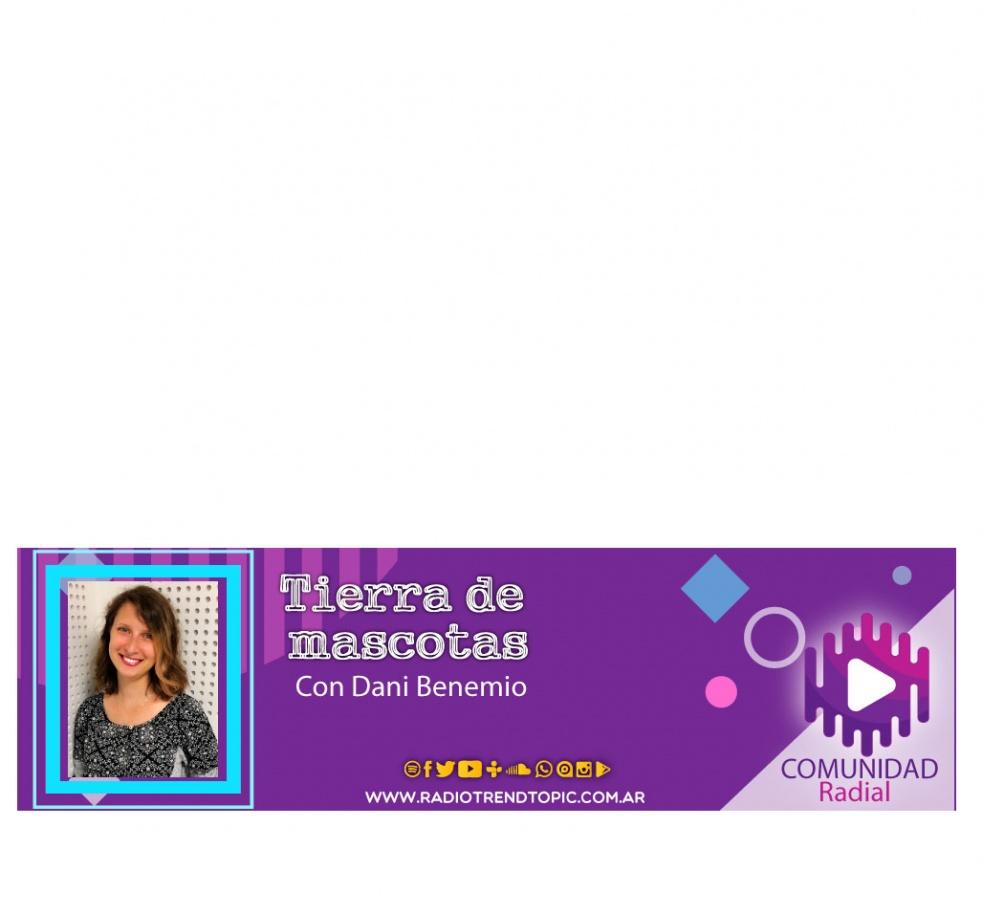Tierra de Mascotas - show cover