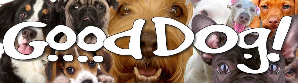 Good Dog! - immagine di copertina