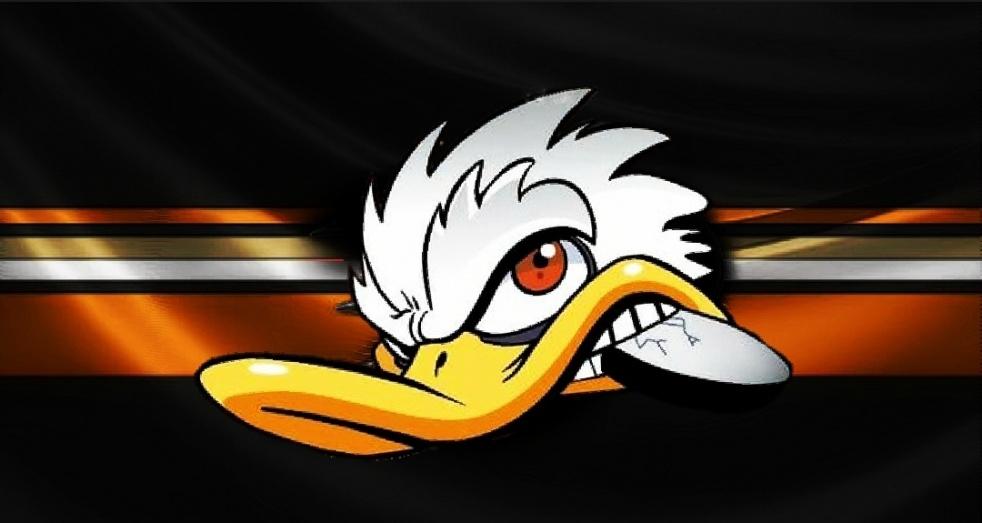 DucksNPucks - immagine di copertina dello show