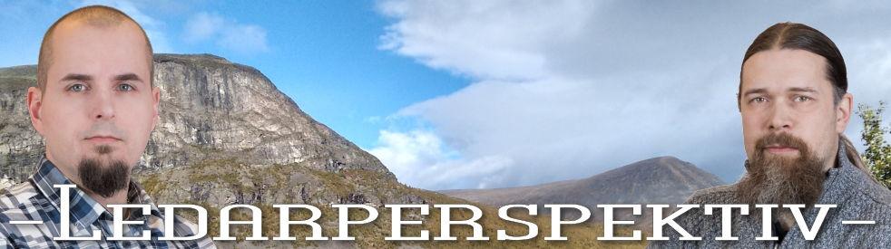 Ledarperspektiv - show cover