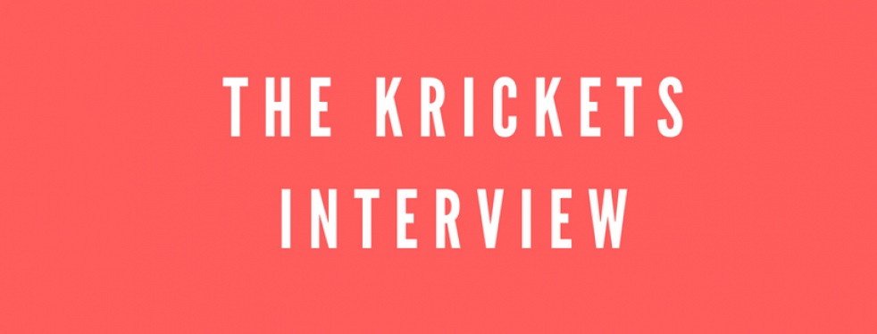 The Kricket Interview. - show cover