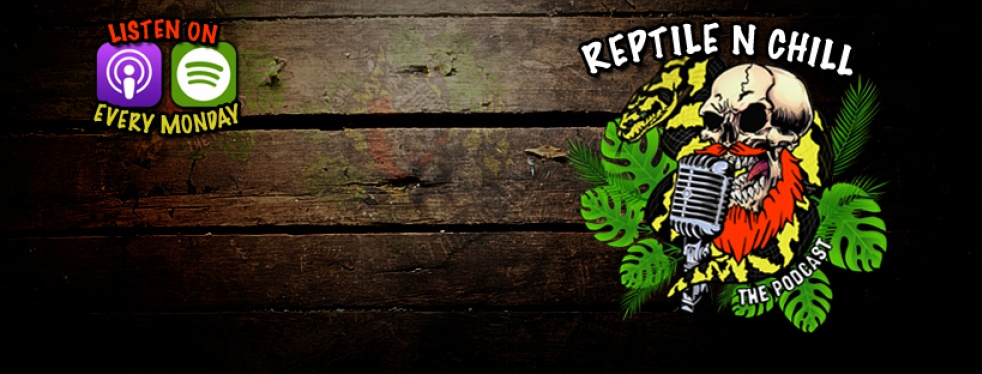 Reptile n Chill - imagen de show de portada