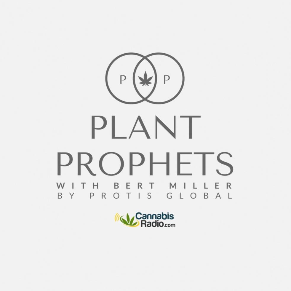 Plant Prophets - imagen de show de portada