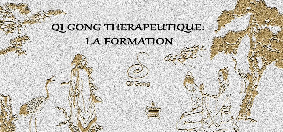 Qigong Thérapeutique et Médical - show cover