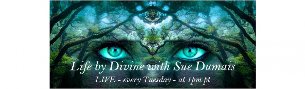 Life by Divine with Sue Dumais - show cover