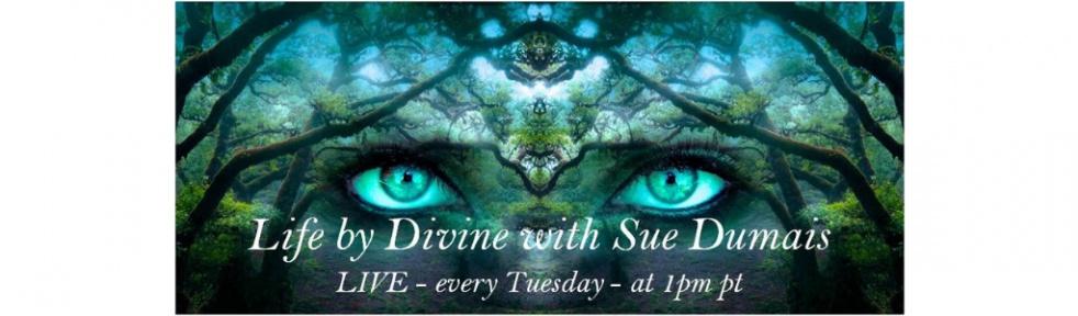 Life by Divine with Sue Dumais - imagen de show de portada