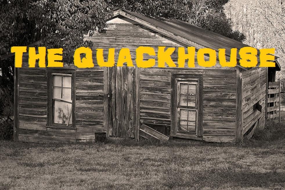 THE QUACKHOUSE - imagen de show de portada