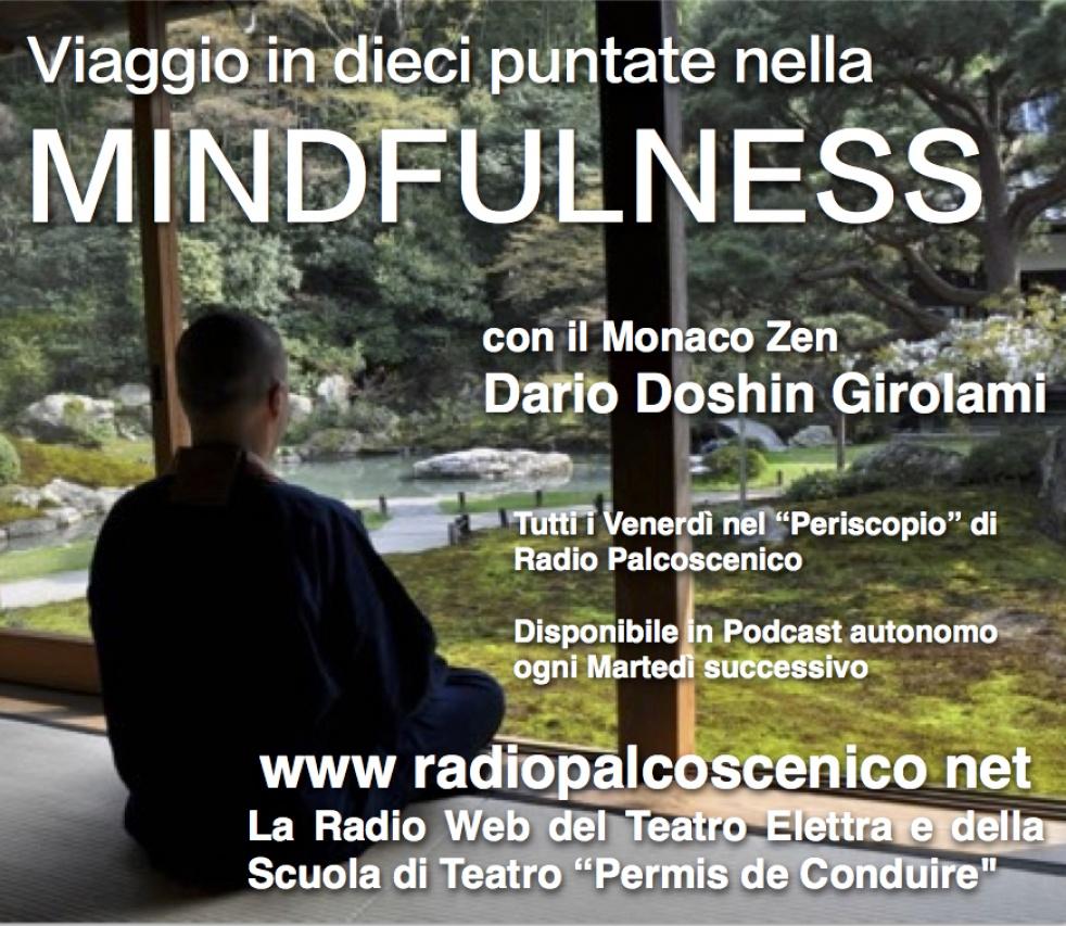 Viaggio nella Mindfulness - show cover