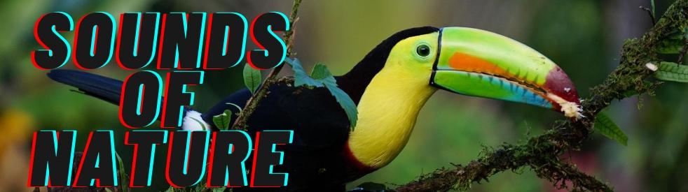 Sounds of Nature - immagine di copertina