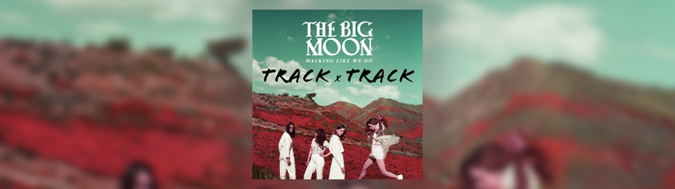 The Big Moon - Cover Image