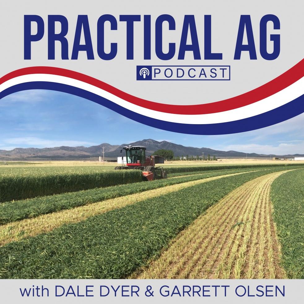 Practical Ag - immagine di copertina