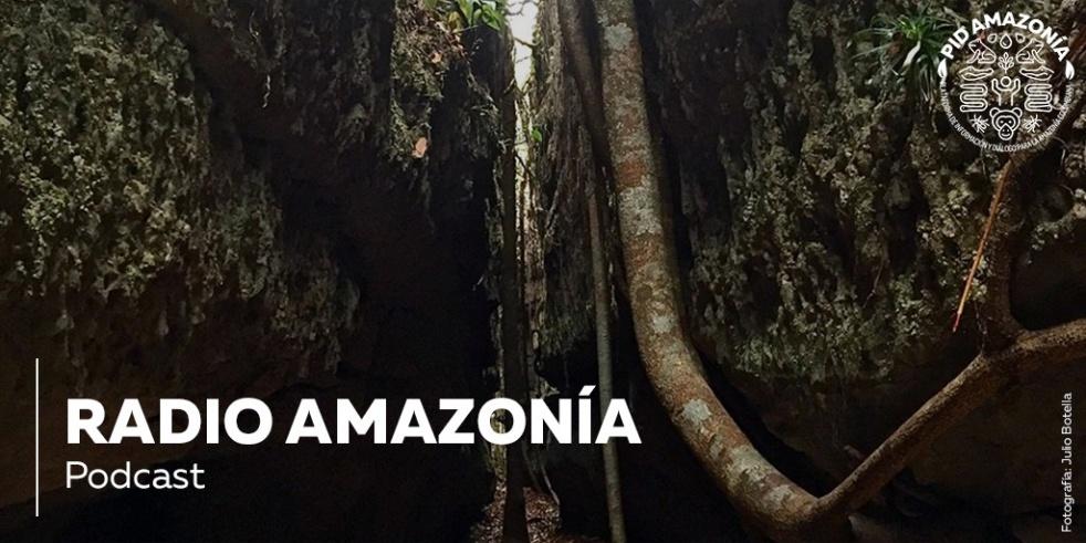 Radio Amazonía - show cover