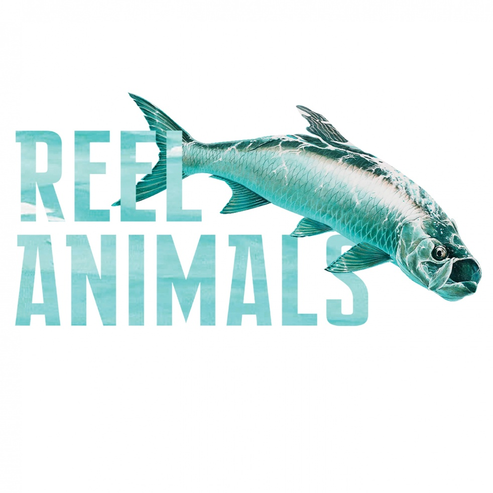 Reel Animals Saturday - show cover