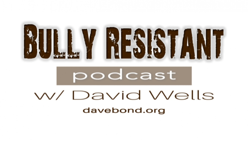 Bully Resistant Show w/ David Wells - show cover