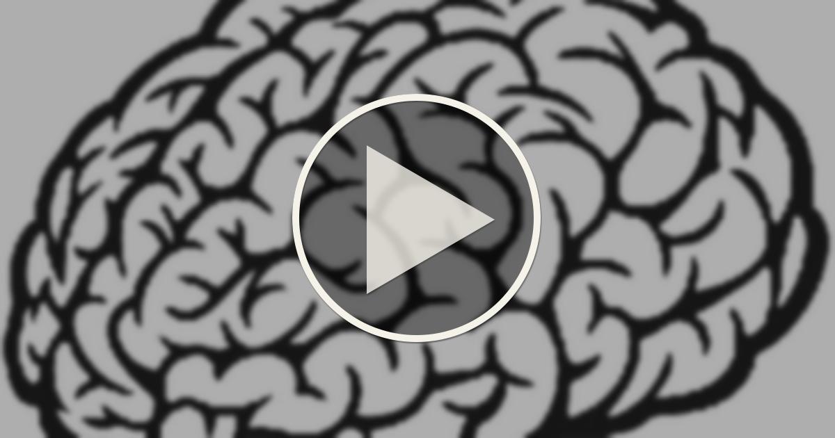 download Workshop für Neonatologen: