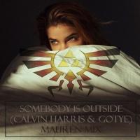 Somebody is Outside (Calvin Harris & Gotye) - Mauren Recop.