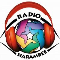 Radio Harambee
