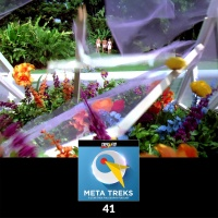 41: Replant the Flowers