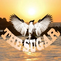 ITNS Radio's 100th Episode Special Featuring The Sugar!!!