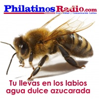 polvadera chatrooms Mexico, chat, webcam, city, chatrooms, chatting, rooms similar more info collapse 53 polvadera new mexico 87828 polvadera, lorenzo, pueblo, piro, hotels.