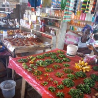 Women Concerns- Voices from Bopolu Market, Gbarpolu